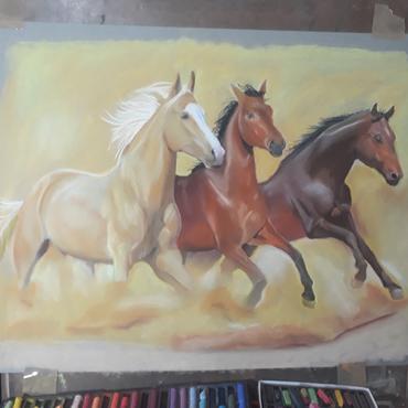 Home_cavalos